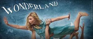 A Year in Wonderland